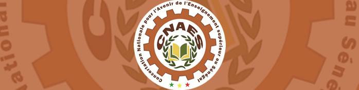 RAPPORT : Concertation nationale sur l'avenir de l'enseignement supérieur au Sénégal